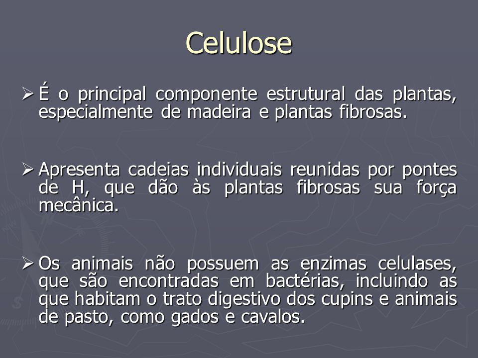 Celulose É o principal componente estrutural das plantas, especialmente de madeira e plantas fibrosas.