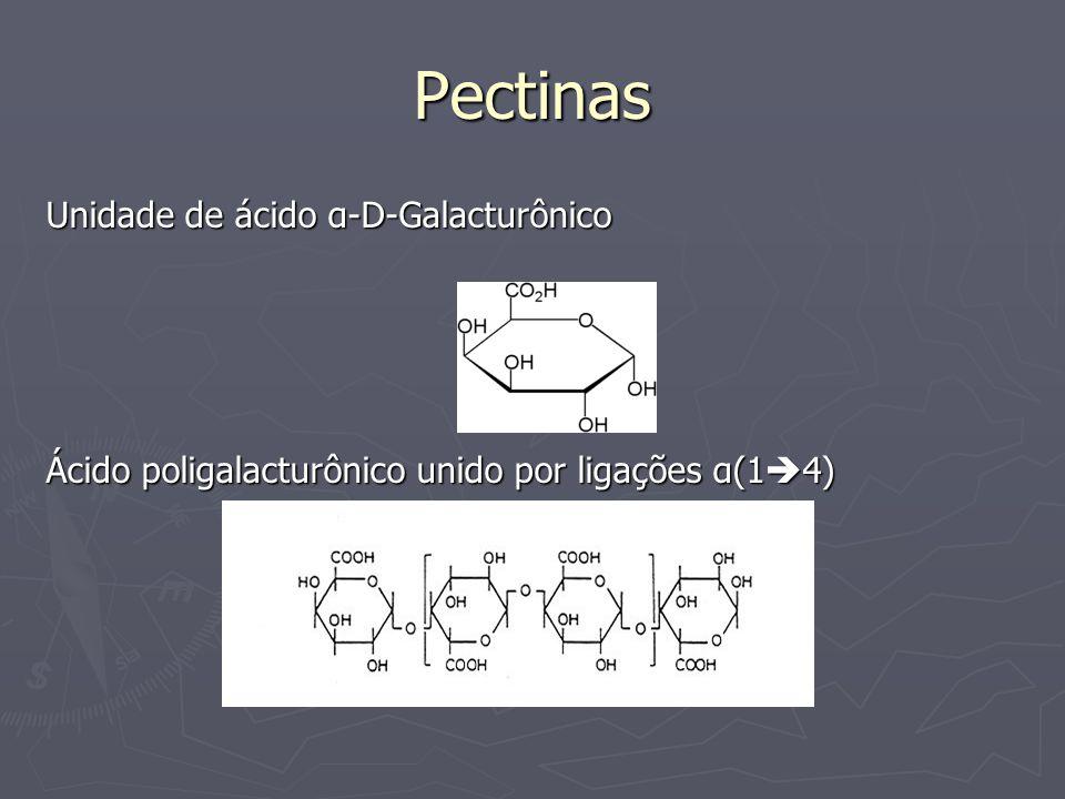 Pectinas Unidade de ácido α-D-Galacturônico