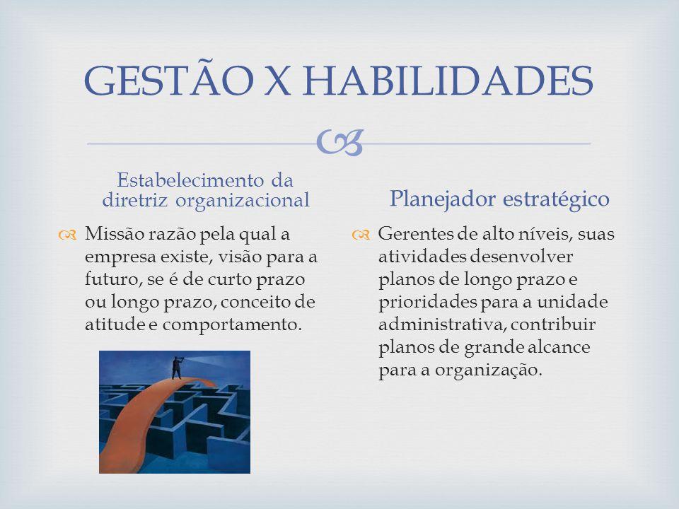 GESTÃO X HABILIDADES Planejador estratégico