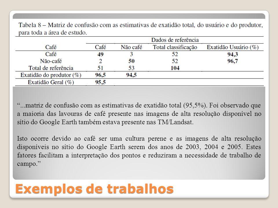 . matriz de confusão com as estimativas de exatidão total (95,5%)