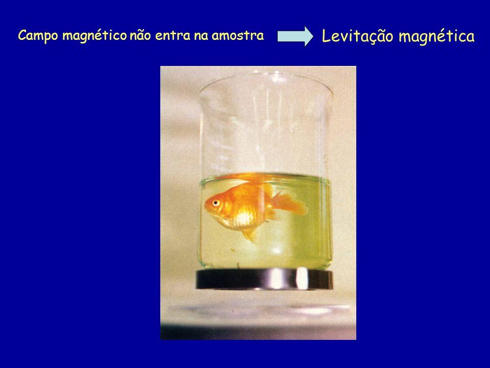 Campo magnético não entra na amostra