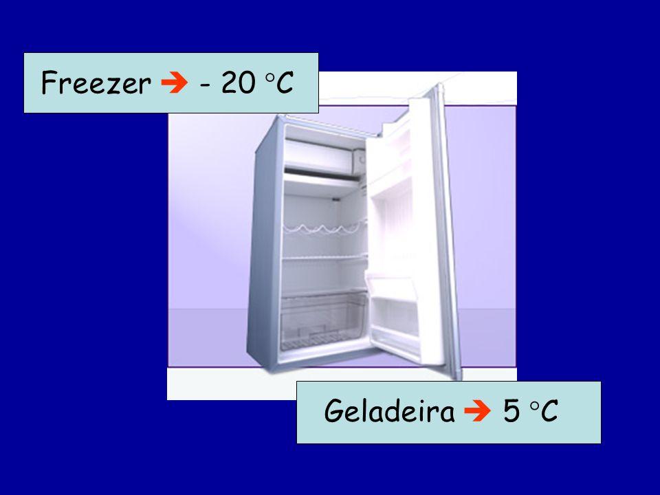 Freezer  - 20 C Geladeira  5 C