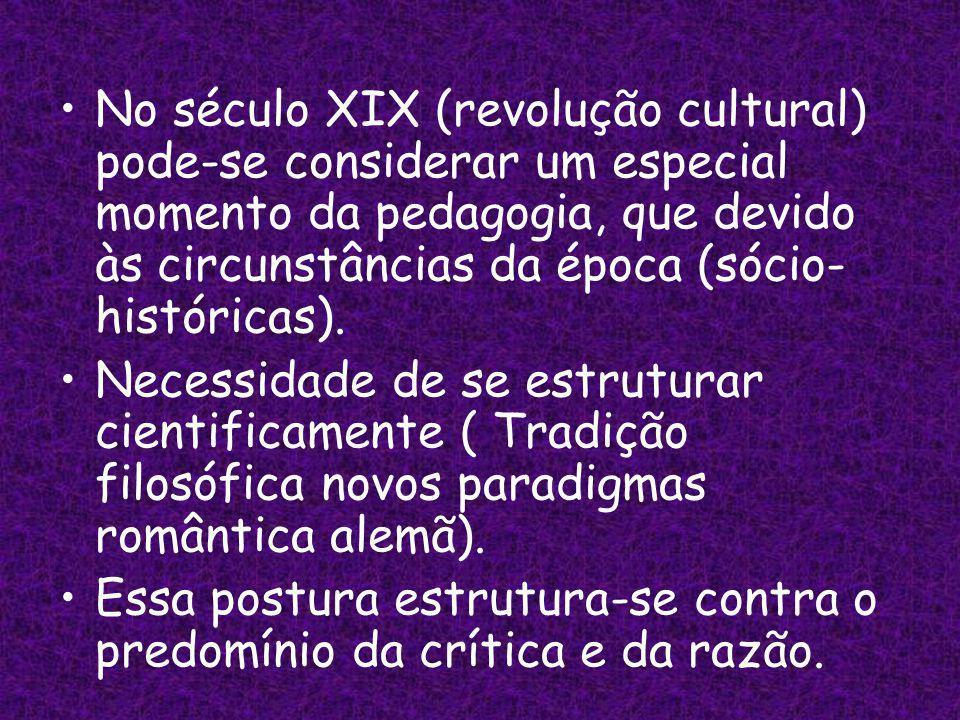 No século XIX (revolução cultural) pode-se considerar um especial momento da pedagogia, que devido às circunstâncias da época (sócio-históricas).