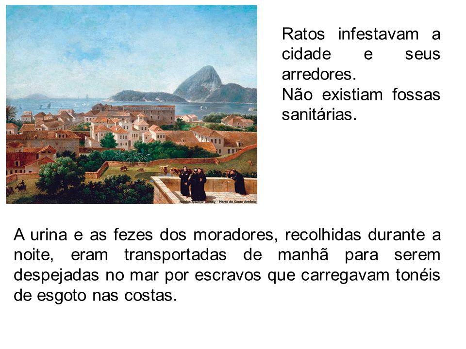 Ratos infestavam a cidade e seus arredores.
