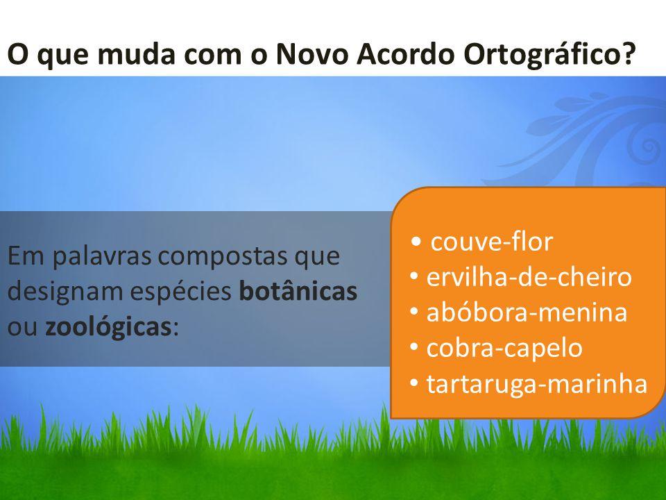 Em palavras compostas que designam espécies botânicas ou zoológicas:
