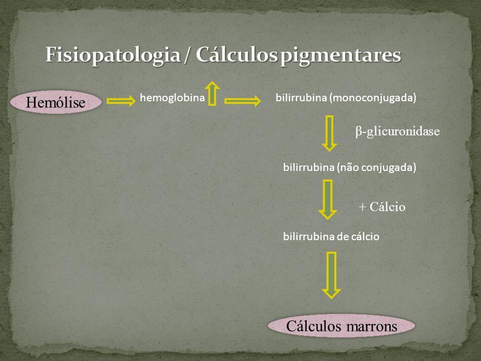 Fisiopatologia / Cálculos pigmentares