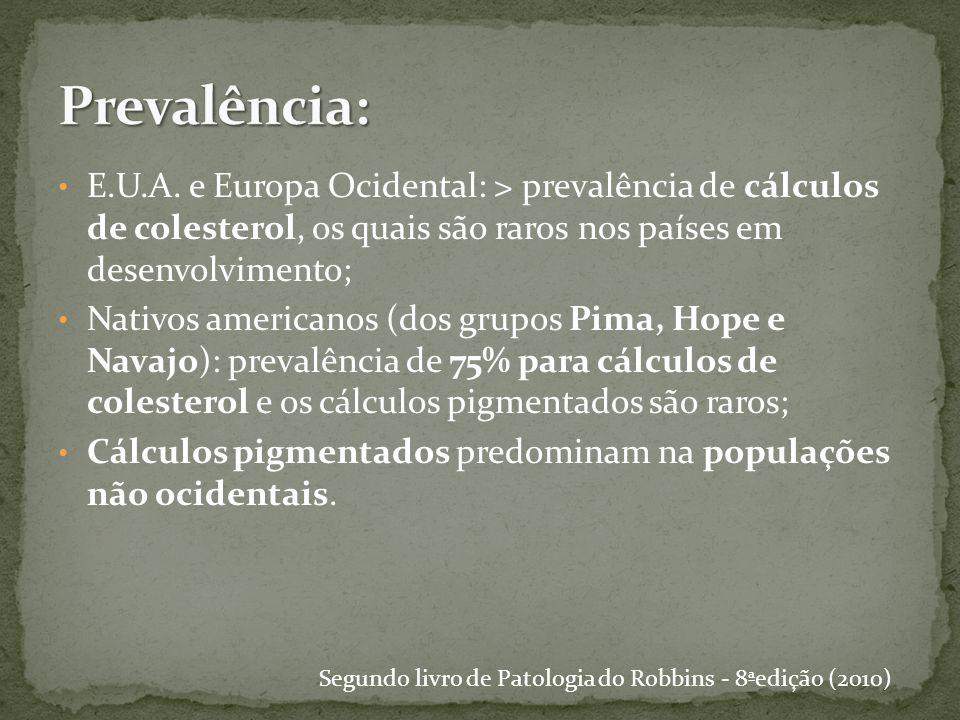 Segundo livro de Patologia do Robbins - 8ªedição (2010)