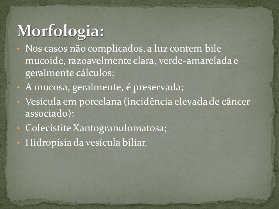 Morfologia: Nos casos não complicados, a luz contem bile mucoide, razoavelmente clara, verde-amarelada e geralmente cálculos;