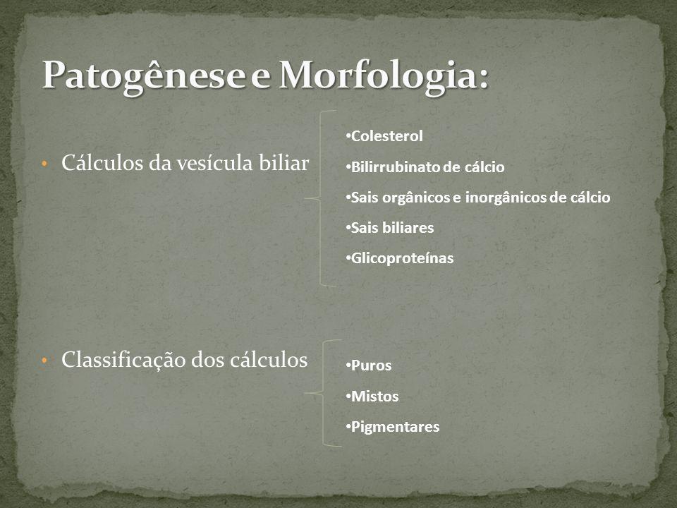 Patogênese e Morfologia: