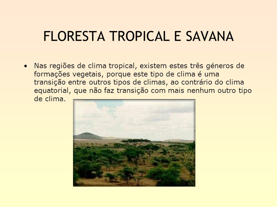 FLORESTA TROPICAL E SAVANA