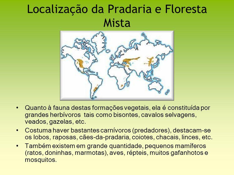 Localização da Pradaria e Floresta Mista