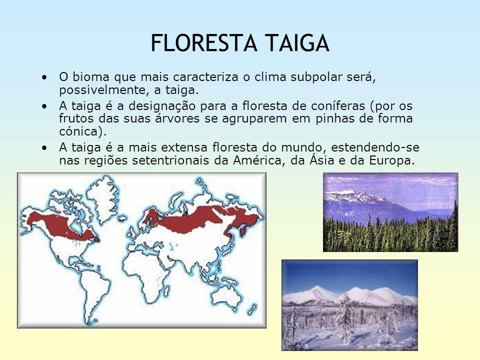 FLORESTA TAIGA O bioma que mais caracteriza o clima subpolar será, possivelmente, a taiga.