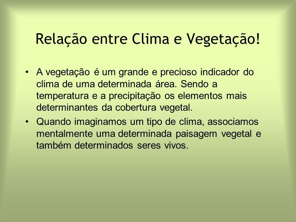 Relação entre Clima e Vegetação!