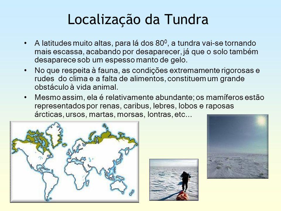 Localização da Tundra