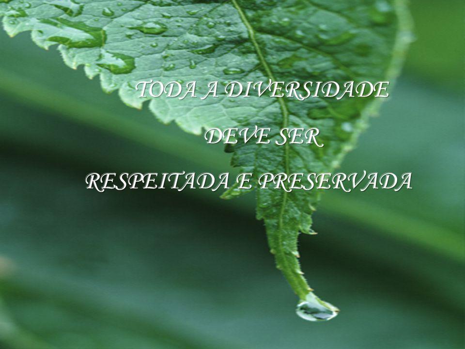 TODA A DIVERSIDADE DEVE SER RESPEITADA E PRESERVADA