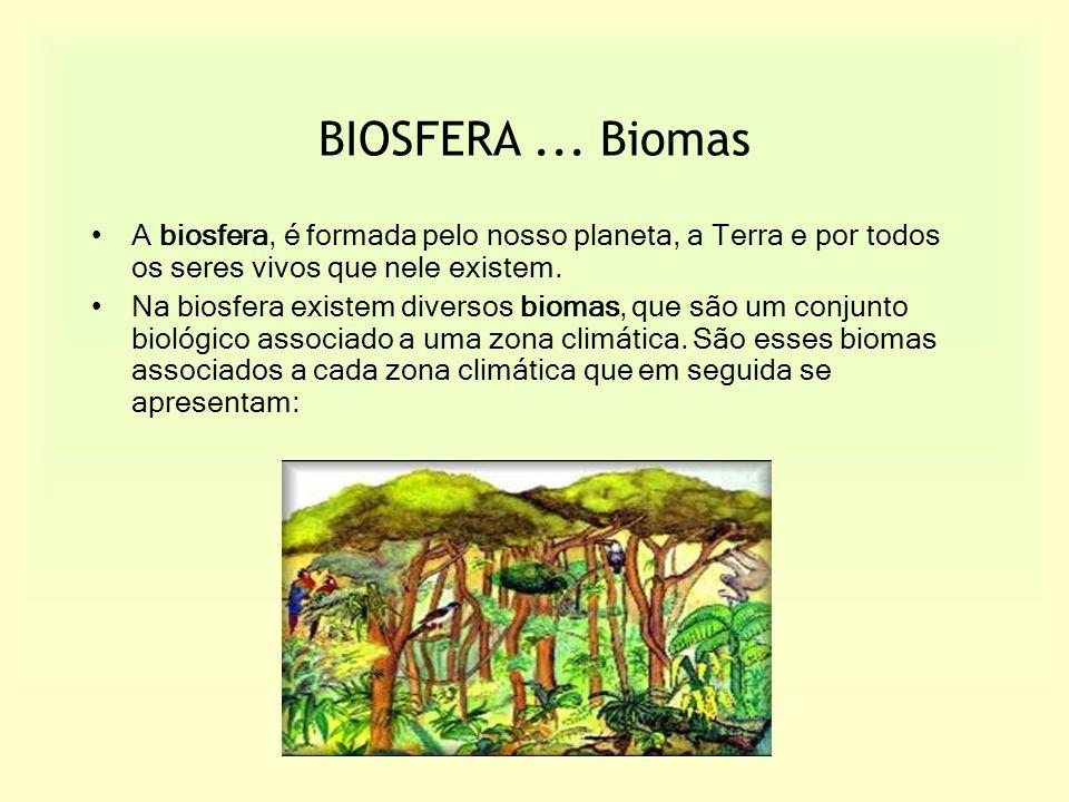 BIOSFERA ... Biomas A biosfera, é formada pelo nosso planeta, a Terra e por todos os seres vivos que nele existem.