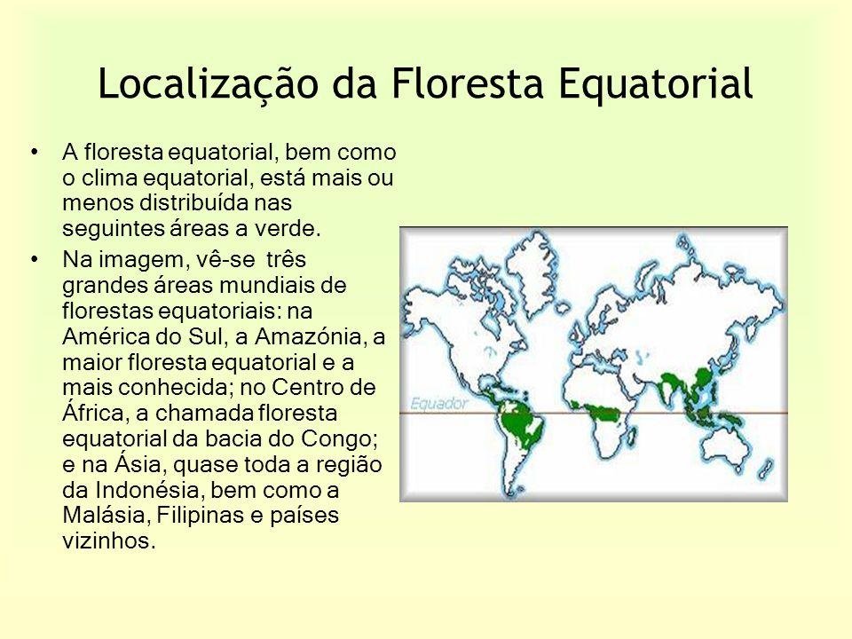 Localização da Floresta Equatorial