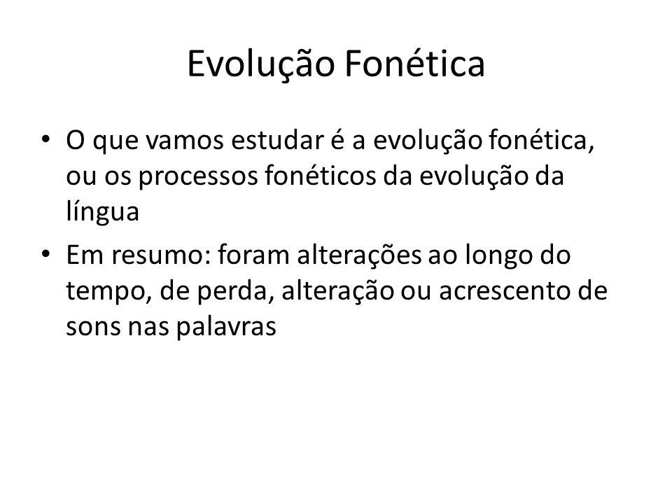 Evolução Fonética O que vamos estudar é a evolução fonética, ou os processos fonéticos da evolução da língua.
