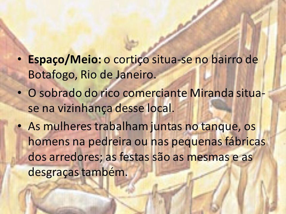 Espaço/Meio: o cortiço situa-se no bairro de Botafogo, Rio de Janeiro.