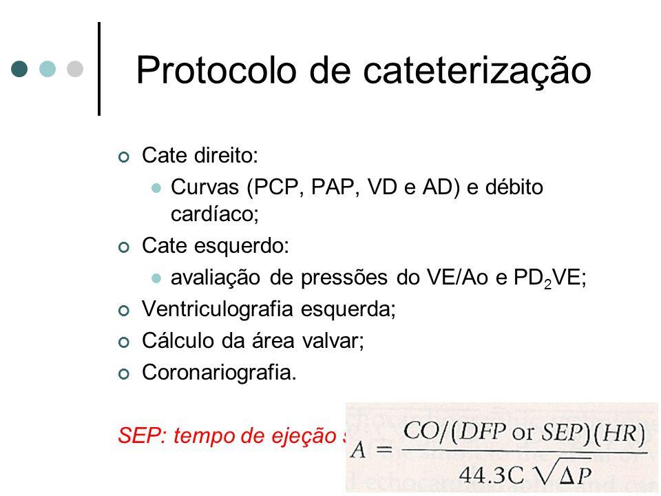 Protocolo de cateterização