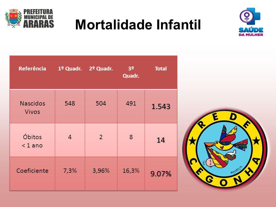 Mortalidade Infantil 1.543 14 9.07% Nascidos Vivos 548 504 491 Óbitos