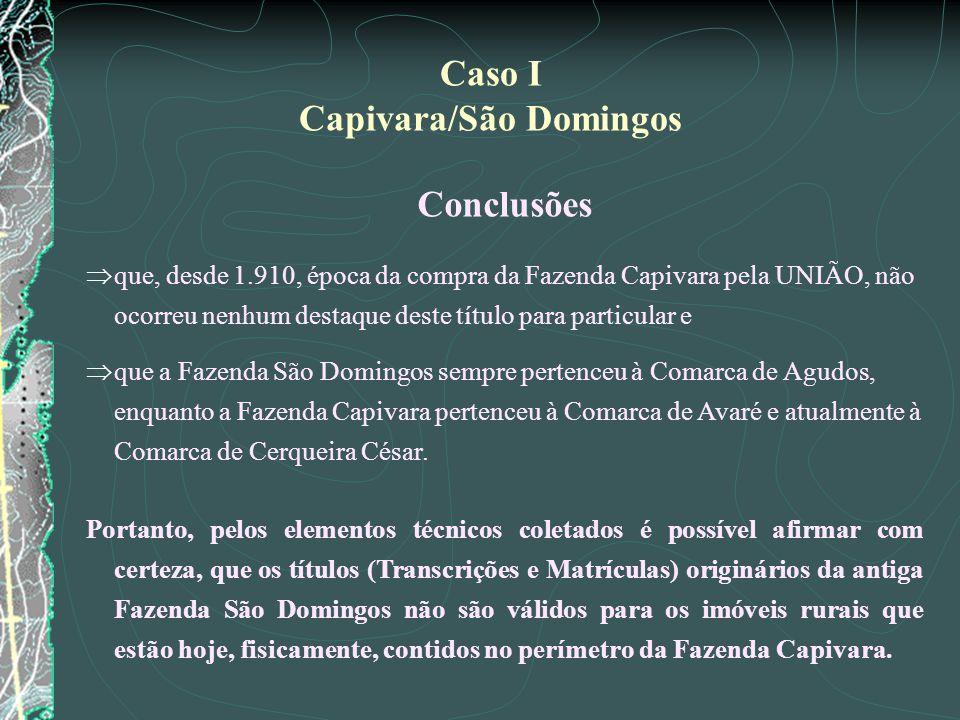 Capivara/São Domingos