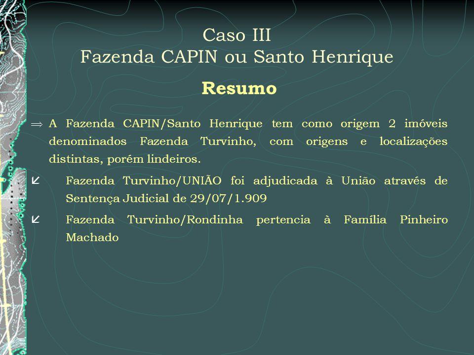 Caso III Fazenda CAPIN ou Santo Henrique
