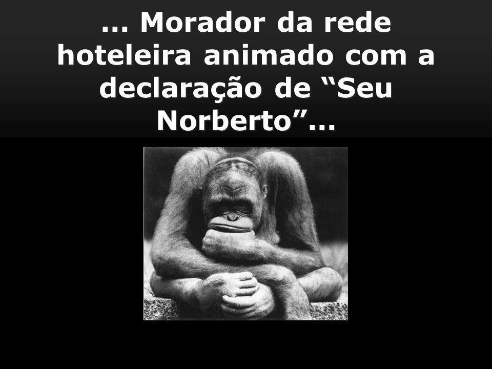 ... Morador da rede hoteleira animado com a declaração de Seu Norberto ...