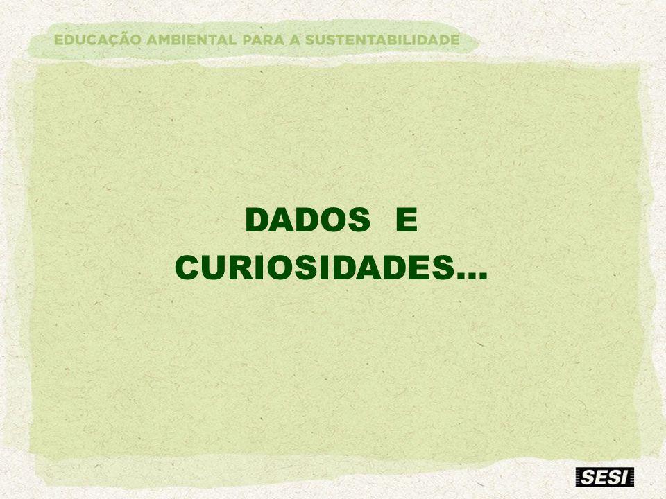 DADOS E CURIOSIDADES... Apenas abertura do próximo slide.
