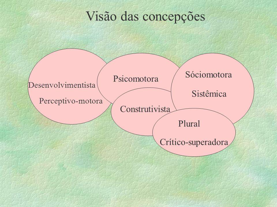 Visão das concepções Sóciomotora Psicomotora Sistêmica Construtivista