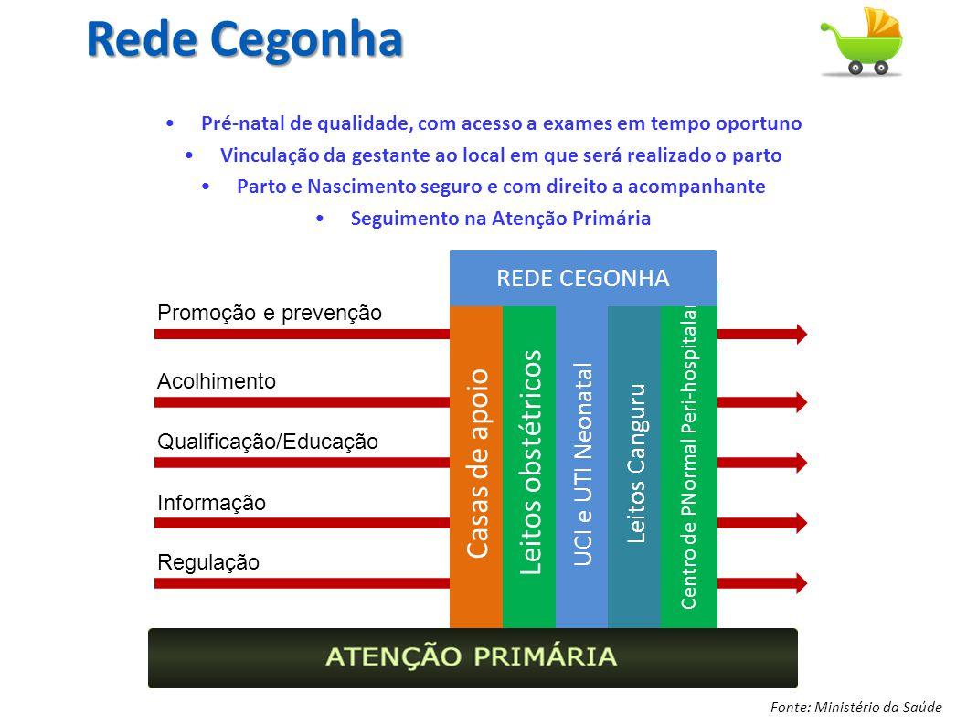 Rede Cegonha Leitos obstétricos Casas de apoio REDE CEGONHA