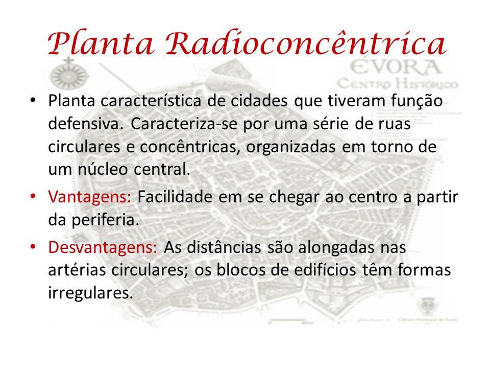 Planta Radioconcêntrica