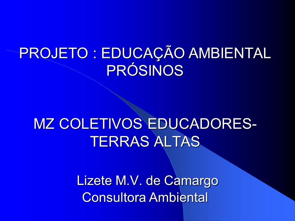 PROJETO : EDUCAÇÃO AMBIENTAL PRÓSINOS MZ COLETIVOS EDUCADORES-TERRAS ALTAS Lizete M.V.