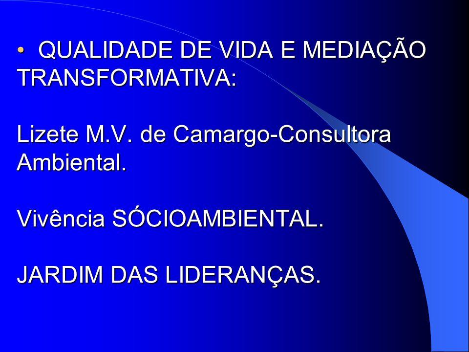 QUALIDADE DE VIDA E MEDIAÇÃO TRANSFORMATIVA: Lizete M. V