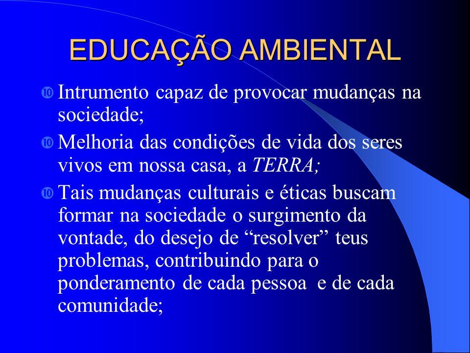 EDUCAÇÃO AMBIENTAL Intrumento capaz de provocar mudanças na sociedade;