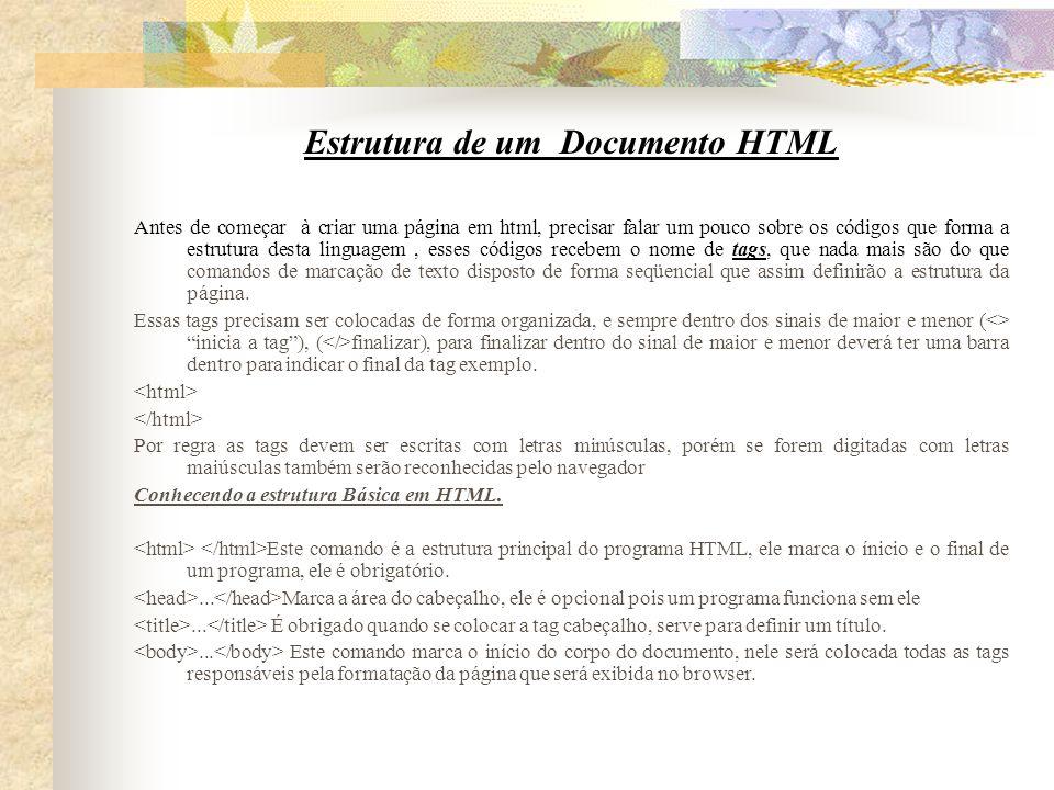 Estrutura de um Documento HTML