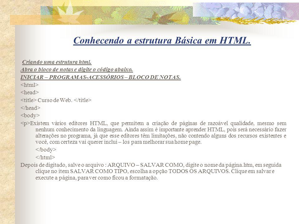 Conhecendo a estrutura Básica em HTML.
