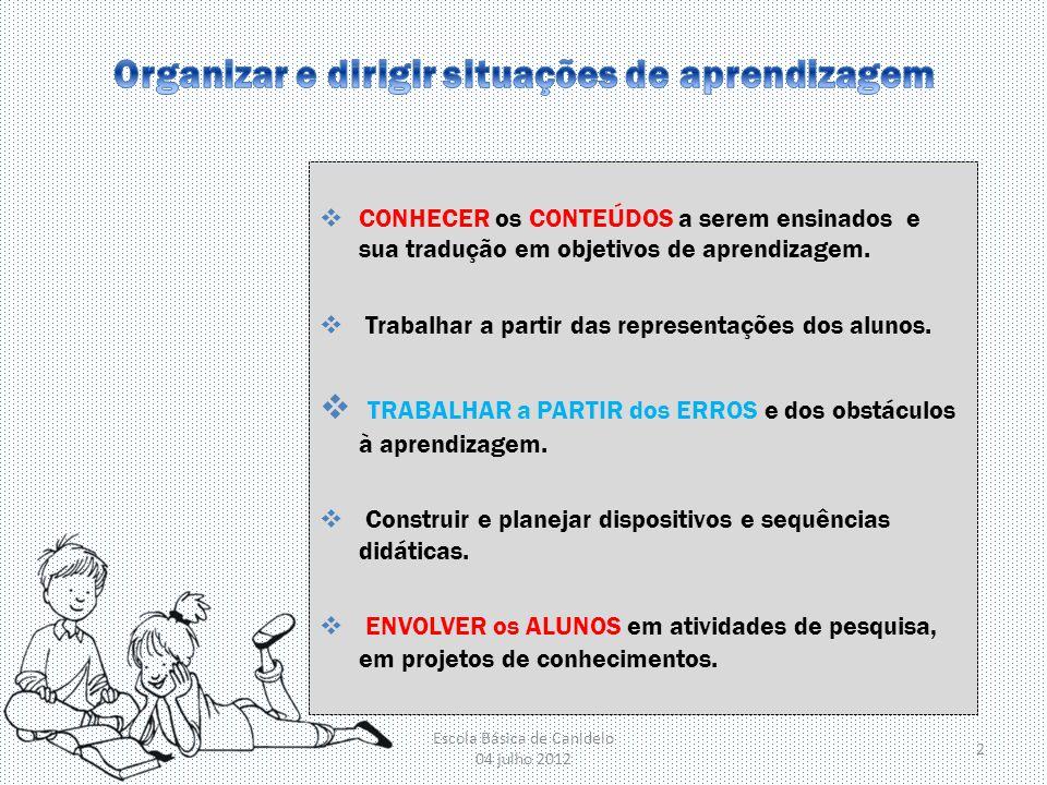 Organizar e dirigir situações de aprendizagem
