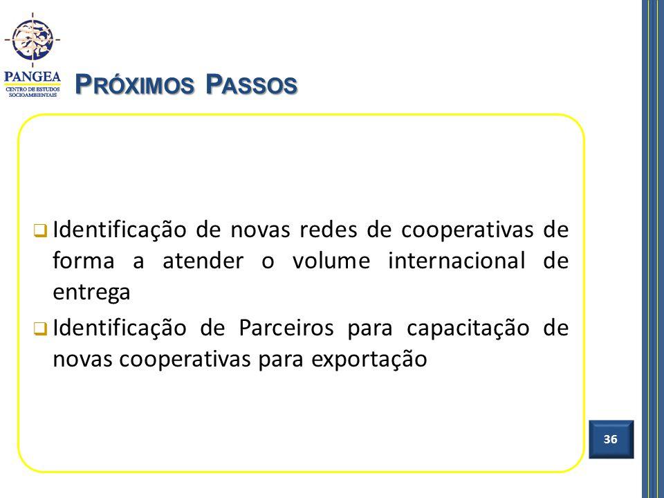 Próximos Passos Identificação de novas redes de cooperativas de forma a atender o volume internacional de entrega.