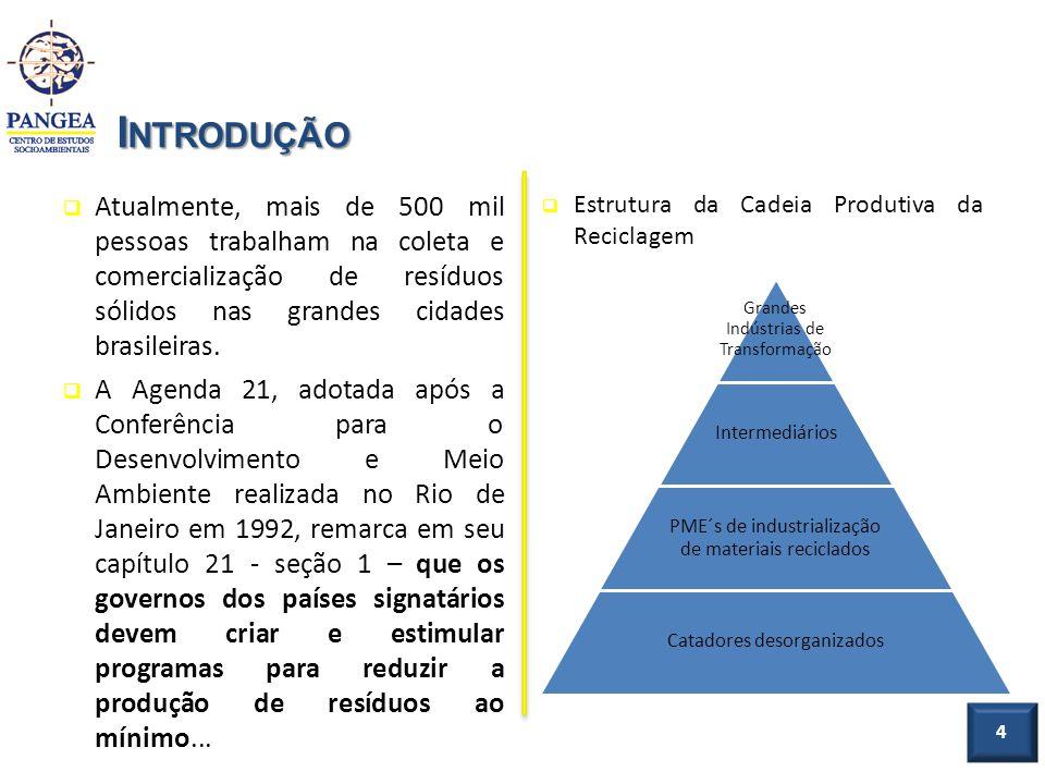 Introdução Atualmente, mais de 500 mil pessoas trabalham na coleta e comercialização de resíduos sólidos nas grandes cidades brasileiras.
