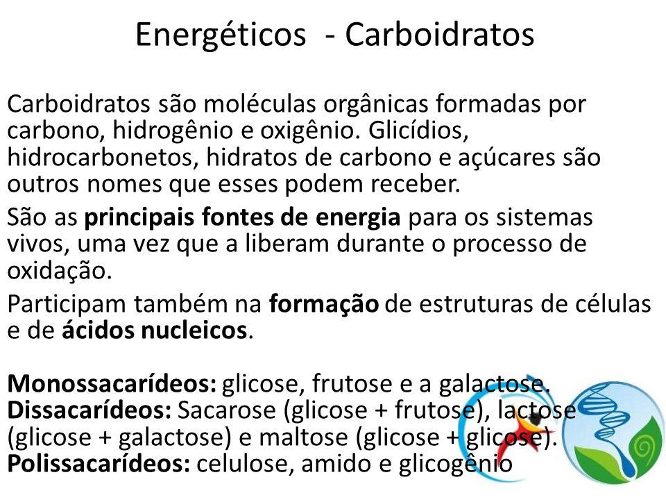 Energéticos - Carboidratos