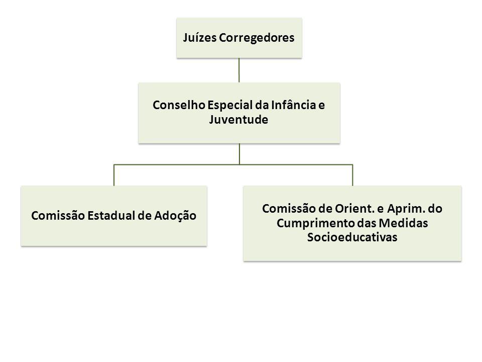 Conselho Especial da Infância e Juventude Comissão Estadual de Adoção
