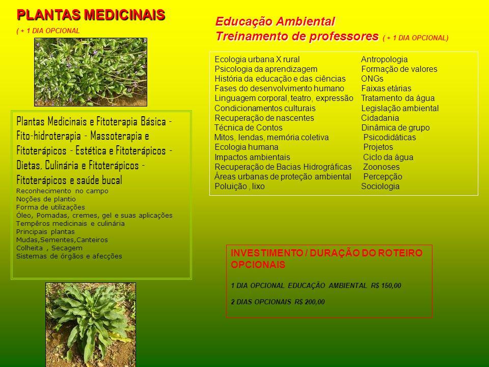 PLANTAS MEDICINAIS Educação Ambiental