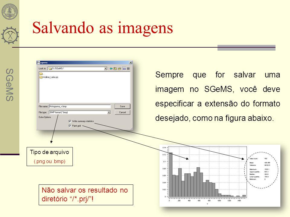 Salvando as imagens Sempre que for salvar uma imagem no SGeMS, você deve especificar a extensão do formato desejado, como na figura abaixo.
