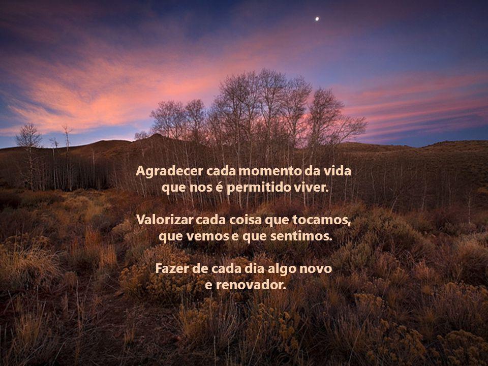 Agradecer cada momento da vida que nos é permitido viver.