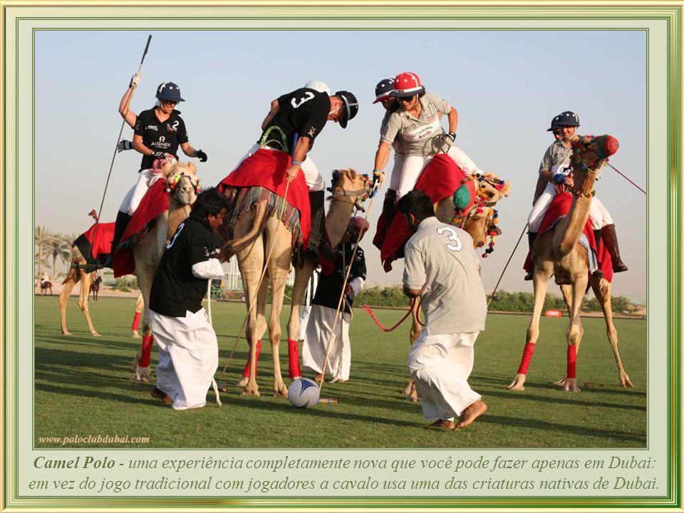 Camel Polo - uma experiência completamente nova que você pode fazer apenas em Dubai: em vez do jogo tradicional com jogadores a cavalo usa uma das criaturas nativas de Dubai.