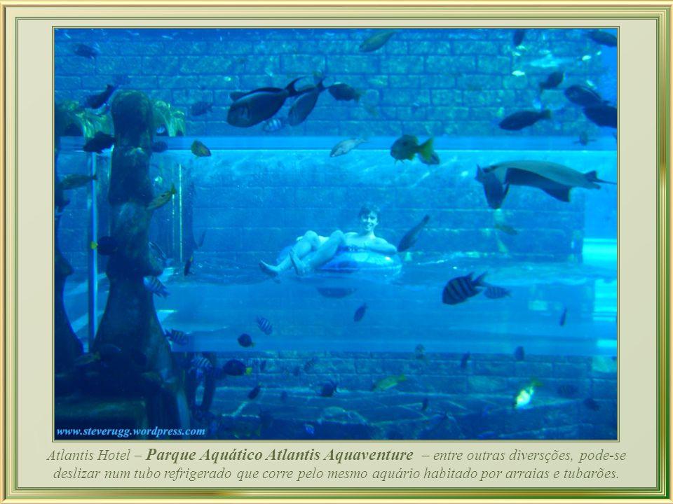 Atlantis Hotel – Parque Aquático Atlantis Aquaventure – entre outras diversções, pode-se deslizar num tubo refrigerado que corre pelo mesmo aquário habitado por arraias e tubarões.