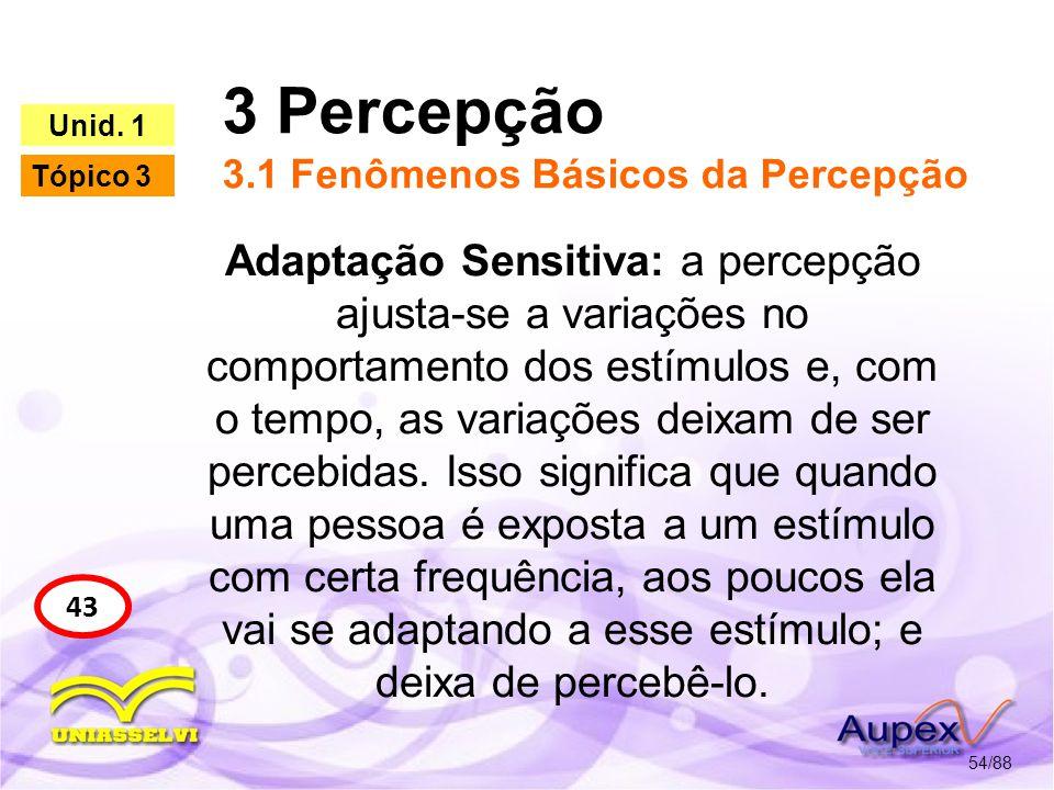 3 Percepção 3.1 Fenômenos Básicos da Percepção