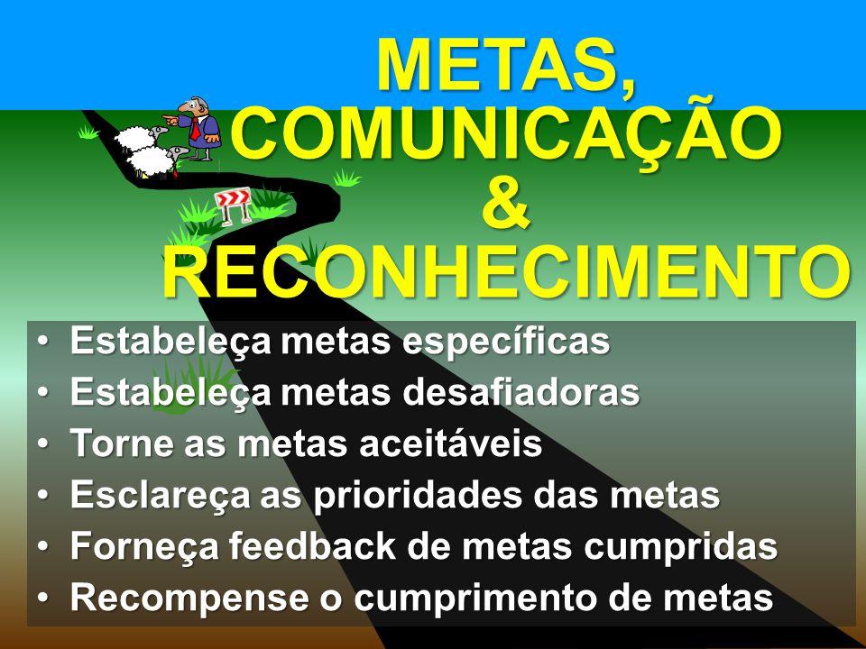 METAS, COMUNICAÇÃO & RECONHECIMENTO