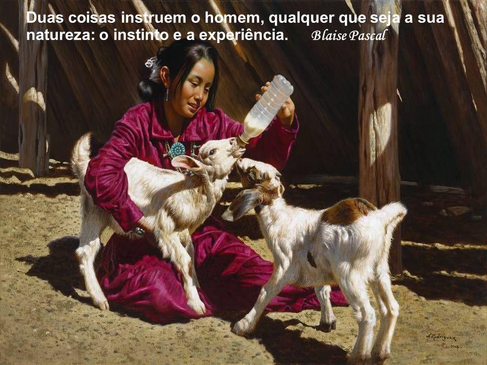 Duas coisas instruem o homem, qualquer que seja a sua natureza: o instinto e a experiência. Blaise Pascal